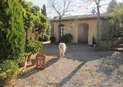 Boggioli house