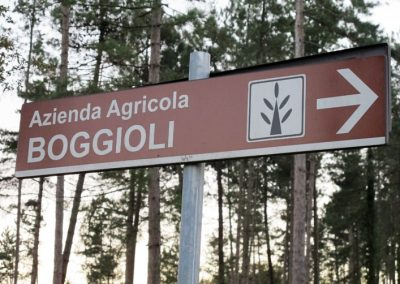 Boggioli the-farm-2